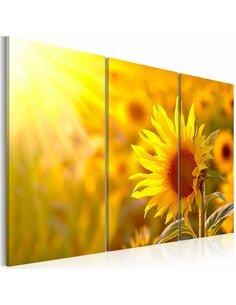 Tableau Triptyque - Soleil et lumière - par Artgeist