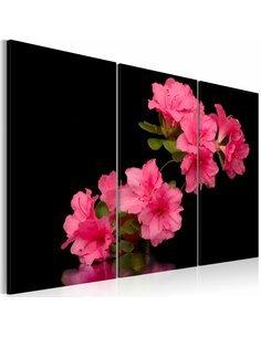 Tableau Triptyque - Fleur de cerisier rose - par Artgeist