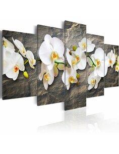 Tableau - 5 tableaux - Orchidée sur le rocher Orchidées Artgeist