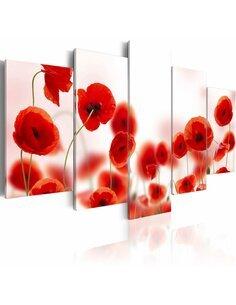 Tableau - 5 tableaux - Coquelicots rougeâtres - par Artgeist