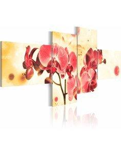 Tableau - 4 tableaux - Dream of orchids - 4 pieces - par Artgeist