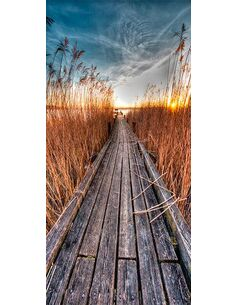 Papier-peint pour porte Photo wallpaper Pier on the lake I  Papier-peints pour porte Artgeist