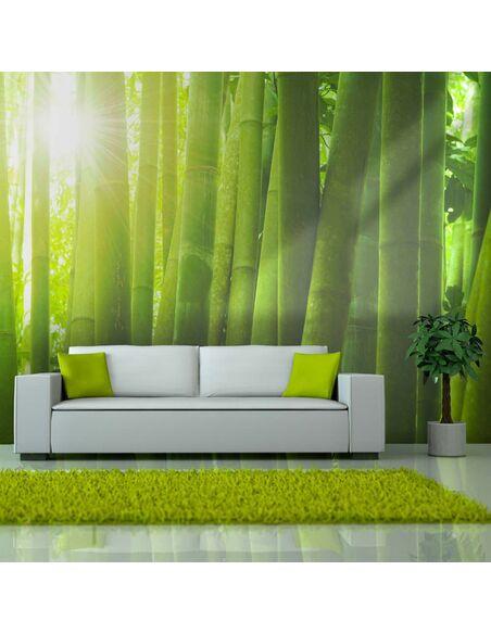 Papier Peint Soleil Et Bambou Artgeist