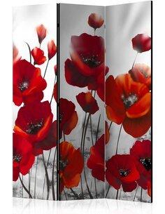 Paravent 3 volets Poppies in the Moonlight  Paravents 3 volets Artgeist