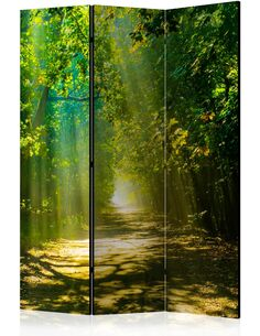 Paravent 3 volets ROAD IN SUNLIGHT - par Artgeist