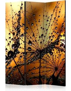 Paravent 3 volets DANDELIONS IN THE RAIN - par Artgeist