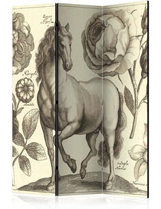 Paravent 3 volets HORSE - par Artgeist