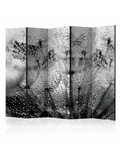 Paravent 5 volets Kiss of the Rain II  Paravents 5 volets Artgeist