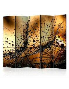 Paravent 5 volets Dandelions in the Rain II  Paravents 5 volets Artgeist