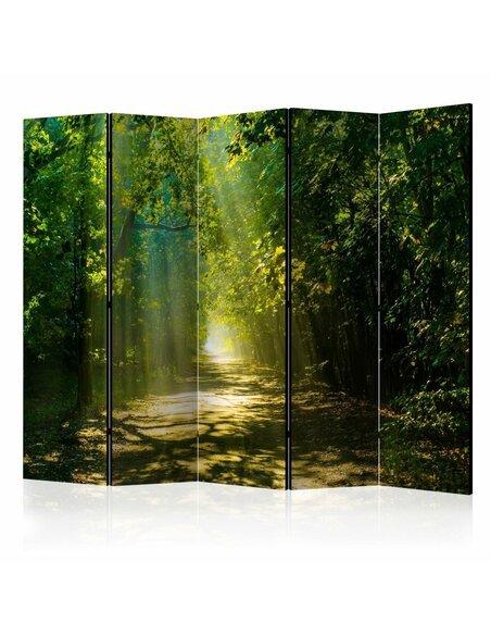 Paravent 5 volets ROAD IN SUNLIGHT II - par Artgeist