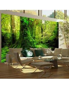 Papier Peint Jungle  Arbres et Forêt Artgeist