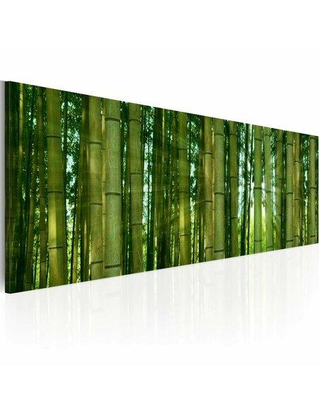 Tableau Panoramique - Canvas print - Bamboo in the sunshine Zen Artgeist