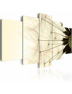 Tableau - 5 tableaux - Pétales délicats d'un pissenlit - par Artgeist