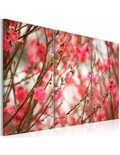 Tableau Triptyque - Branches du cerisier Fleurs variées Artgeist