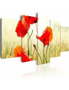 Tableau - 5 tableaux - Nature et rouge des coquelicots - par Artgeist