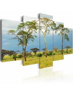 Tableau FLORE DE L'AFRIQUE - par Artgeist