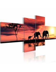 Tableau - 4 tableaux - Maman, papa et bébé éléphant - par Artgeist