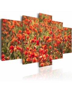 Tableau - 5 tableaux - Coquelicots rouges dans la prairie verte - par Artgeist