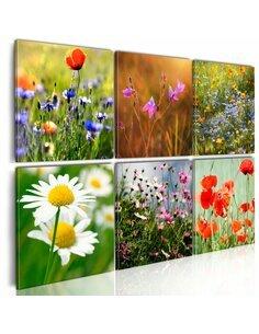 Tableau - 4 tableaux - Prairie multicolorée Fleurs variées Artgeist