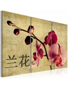 Tableau Triptyque - Triptych, Orient and orchid Orchidées Artgeist