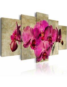 Tableau - 5 tableaux - Orchids on canvas - 5 pieces - par Artgeist