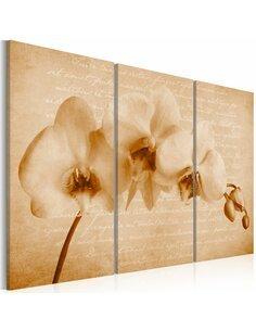 Tableau Triptyque - orchidée (vintage) Orchidées Artgeist