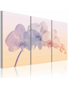 Tableau Triptyque - Orchid spectrum - par Artgeist