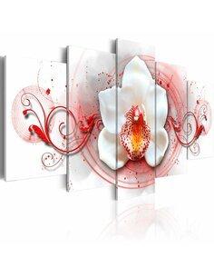 Tableau - 5 tableaux - Orchidée - expression rouge Orchidées Artgeist