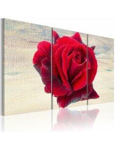 Tableau LYRICAL ROSE - par Artgeist