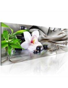 Tableau Panoramique - Zen composition: bamboo, orchid and stones Zen Artgeist