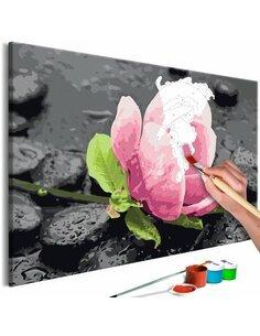Tableau à peindre soi même PINK FLOWER AND STONES - par Artgeist