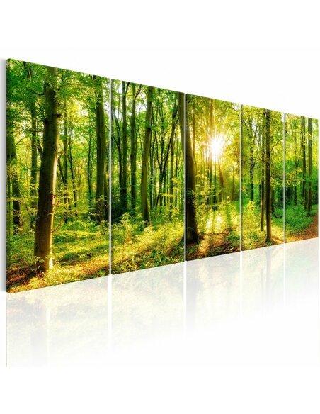 Tableau MAGIC FOREST - par Artgeist