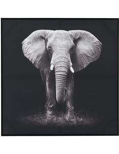 Cadre Elephant BOOLBURRA - par J-Line
