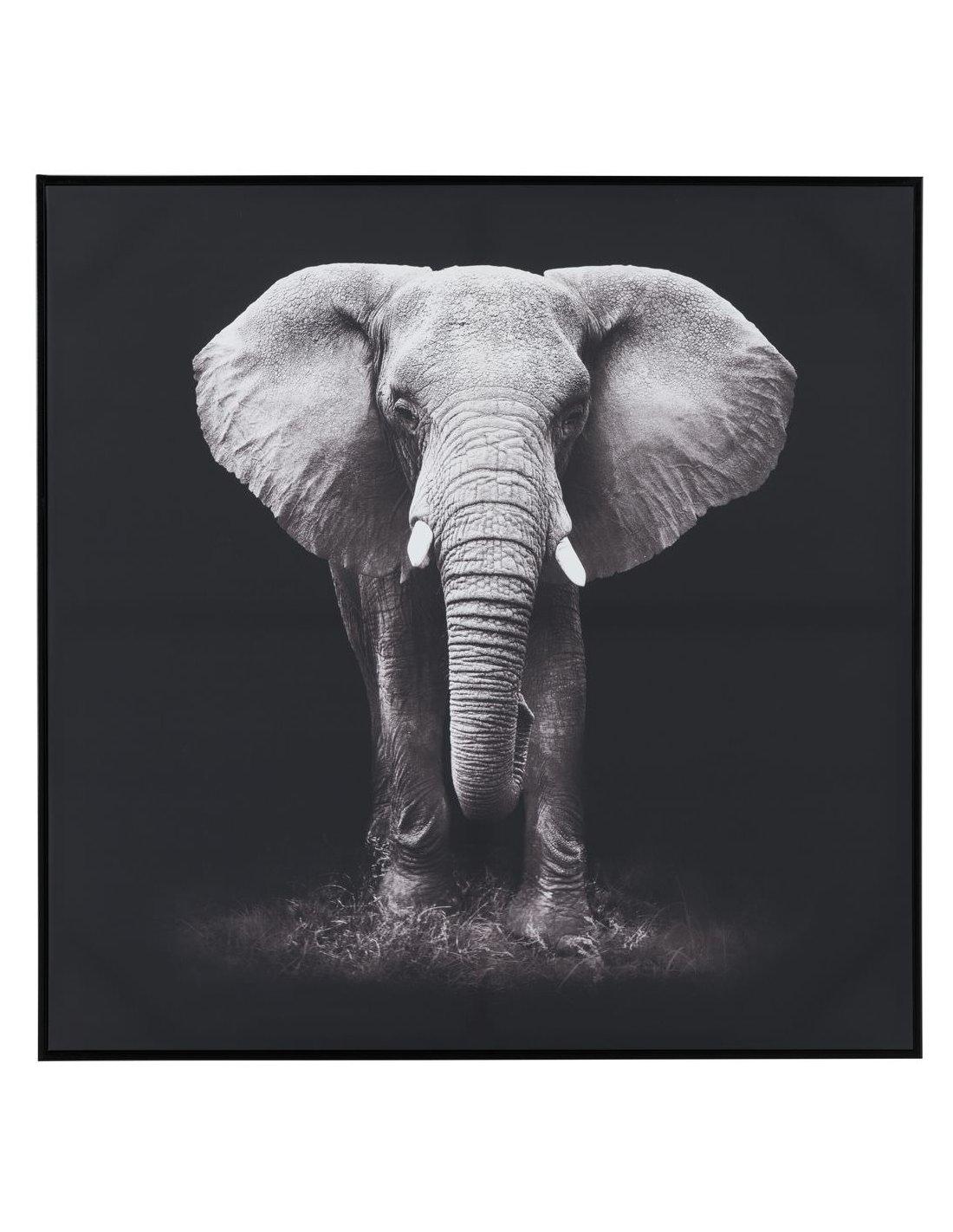 Toile Photos XXL Art Imprimé Image éléphant Afrique Animal Paysage g-c-0024-b-m