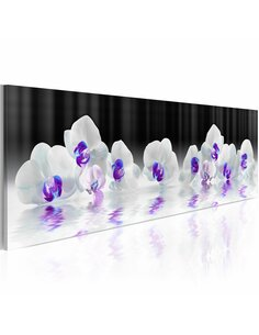 Tableau Orchidées de l'eau Orchidées Artgeist