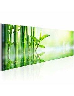 Tableau GREEN BAMBOO - par Artgeist