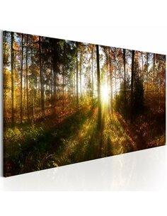 Tableau BEAUTIFUL FOREST - par Artgeist