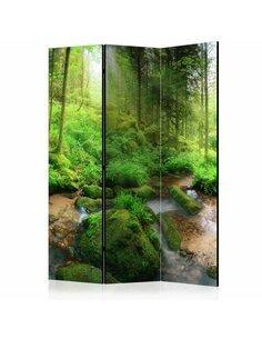 Paravent 3 volets HUMID FOREST - par Artgeist