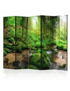 Paravent 5 volets HUMID FOREST II - par Artgeist