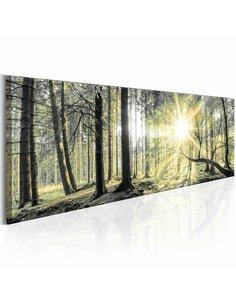 Tableau MORNING FOREST - par Artgeist