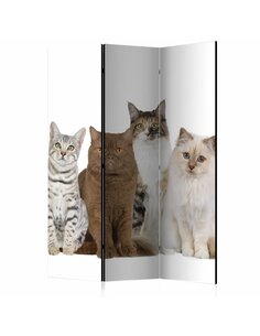 Paravent 3 volets SWEET CATS - par Artgeist