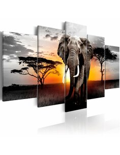Tableau ELEPHANT AT SUNSET - par Artgeist