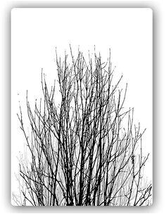 Plaque acier décorative COURONNE D'ARBRE - par Feeby