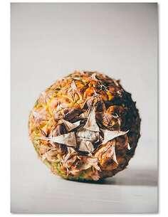 Tableau FRUITS EXOTIQUES imprimé sur bois - par Feeby
