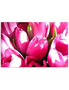 Tableau TULIPES ROSES 2 imprimé sur bois - par Feeby