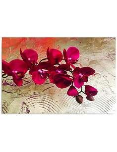 Tableau ORCHIDÉES 10 imprimé sur toile - par Feeby