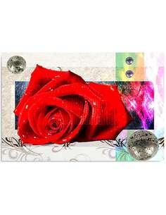 Tableau ROSE ROUGE imprimé sur toile - par Feeby