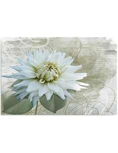 Tableau FLEUR BLANCHE imprimé sur toile - par Feeby