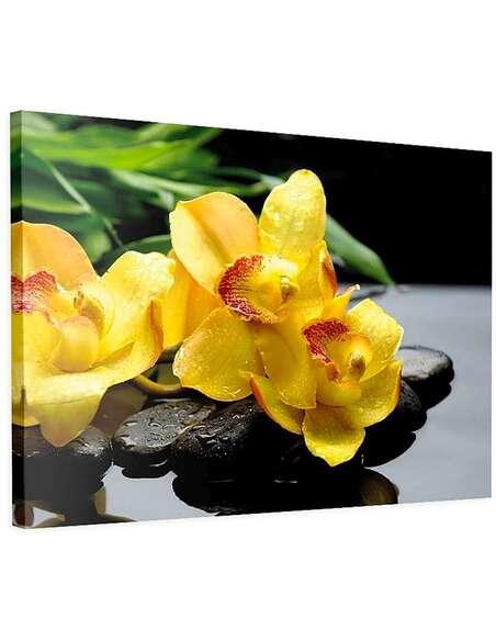 Tableau ORCHIDÉES JAUNES imprimé sur toile - par Feeby