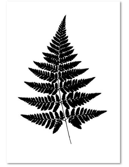 Tableau FEUILLES DE FOUGÈRE imprimé sur toile - par Feeby